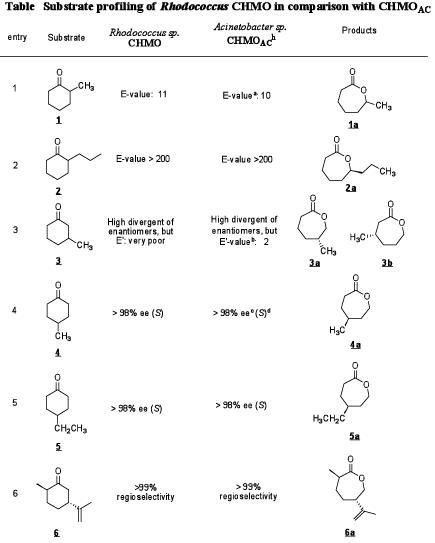 2-ヒドロキシシクロヘキサノン-2-モノオキシゲナーゼ